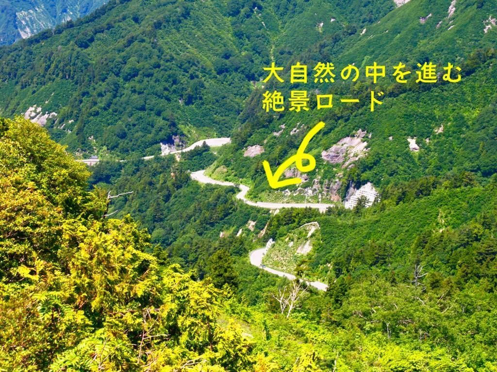 白山白川郷ホワイトロード(旧 白山スーパー林道)絶景の道