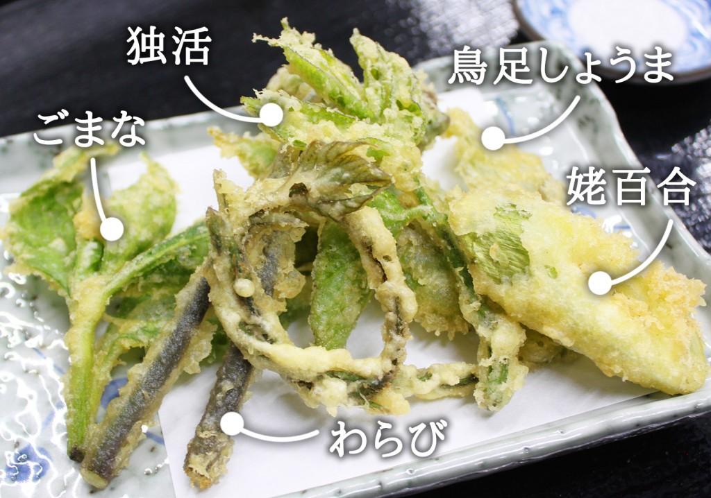 山菜・山野草天ぷら