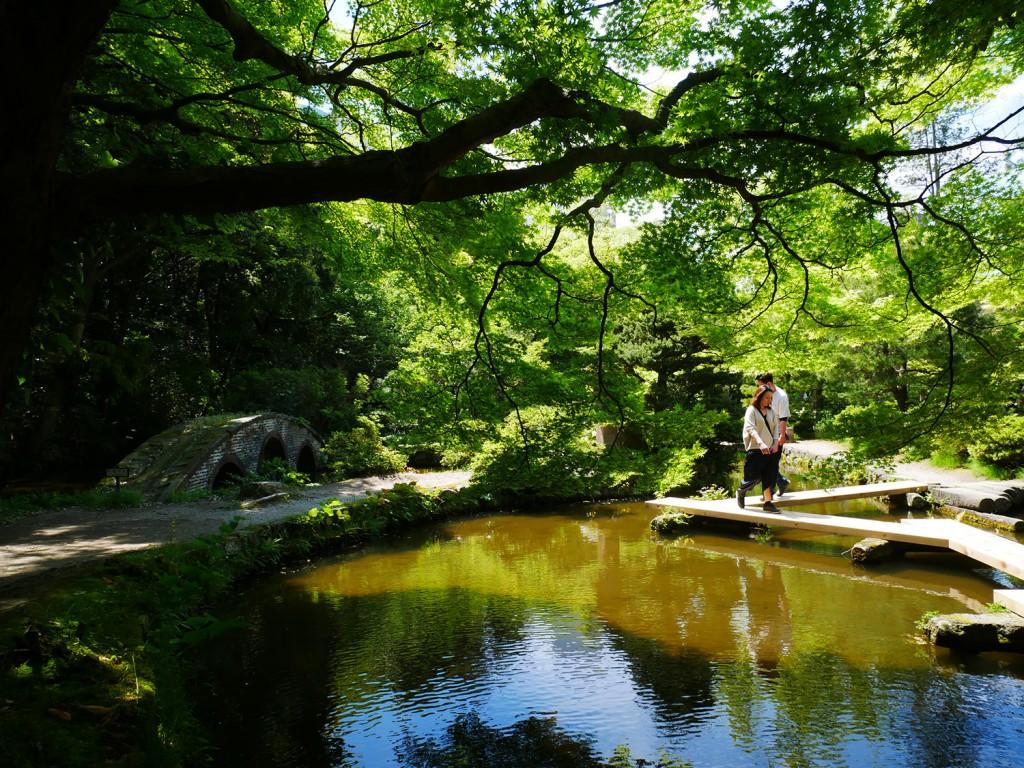尾山神社の庭園