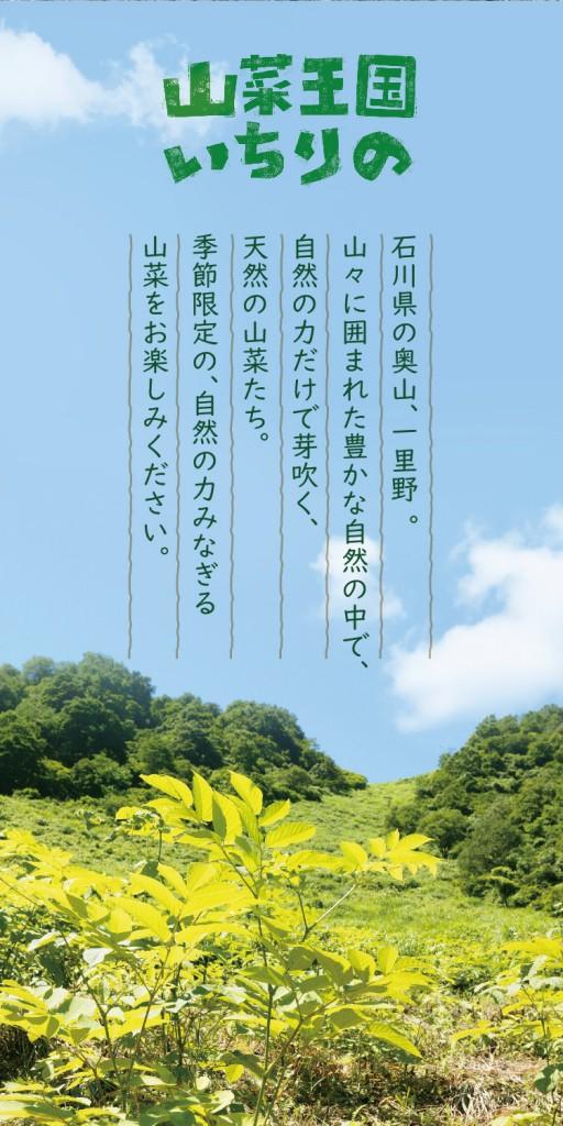 sansai_common