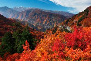 一里野周辺の魅力的なスポットと風景